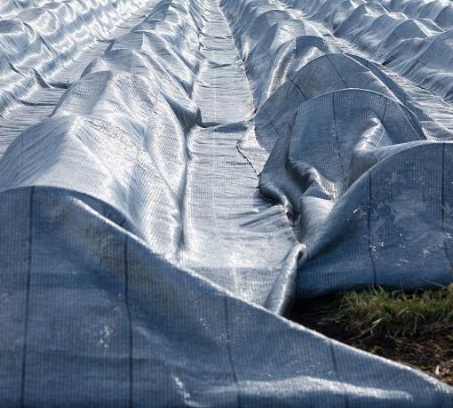 Silver non woven fabric on Japanese farm
